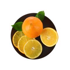 【拼团】埃及进口鲜橙子 10粒装 单果约140-200g
